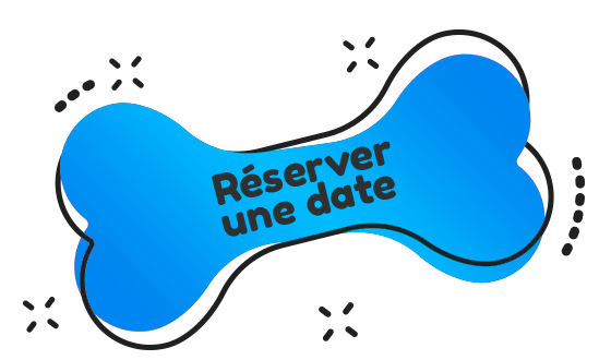 https://adresse-canine.fr/wp-content/uploads/2020/07/book_now_blue.png